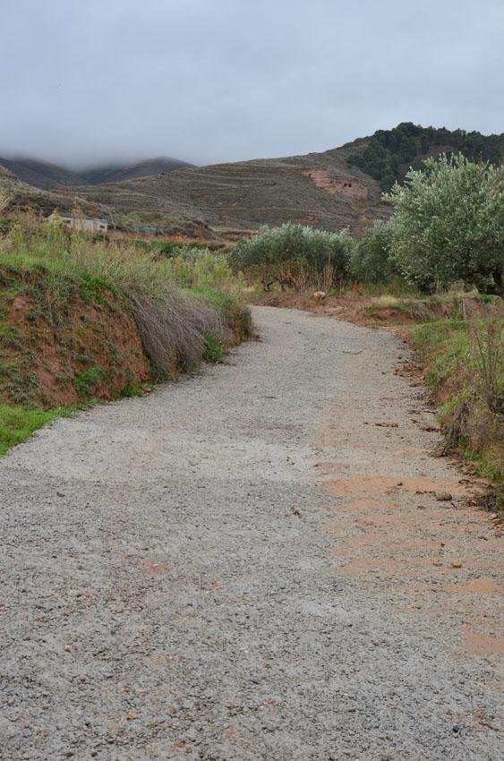 camino pinilla