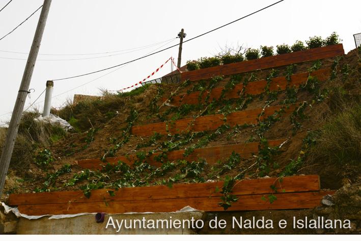 jardinera1